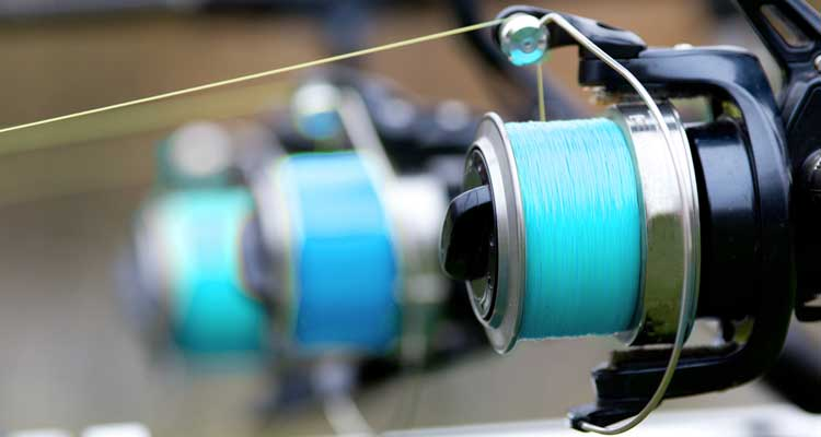 Spinning Reel Line Capacity