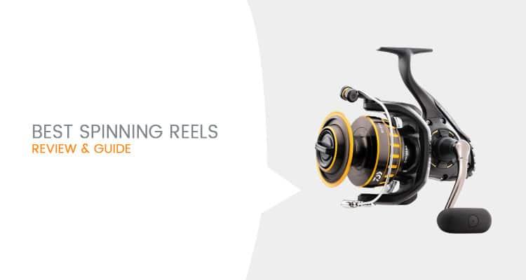 Best Spinning Reels To Buy