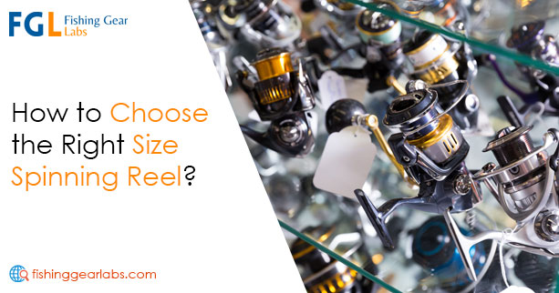 How to Choose the Right Spinning Reel Size